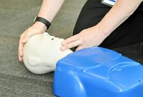 cpr training mannequin